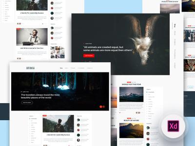 2 Blog Homepage XD templates