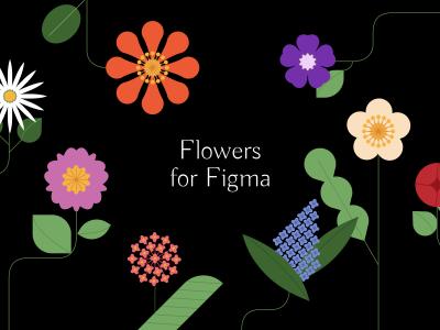 Flower Illustrations Pack