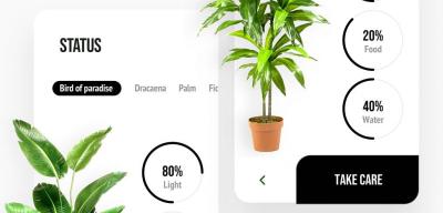 Free XD plant animated app